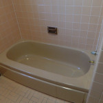Another Before Picture of Brown Bathroom Before Reglazing Bathtub, Wall Tile and Floors